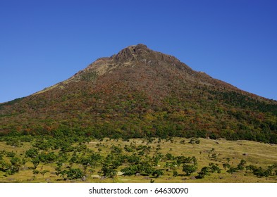 Leaves the mountains and blue sky