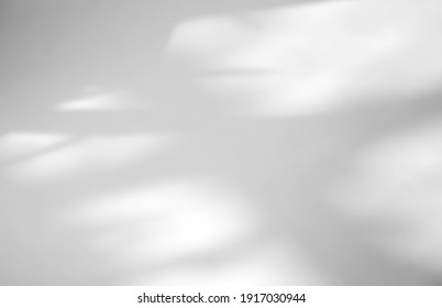 Leaves natural shadow overlay on white texture background, for overlay on product presentation, backdrop and mockup, summer seasonal concept - Shutterstock ID 1917030944