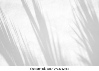 Leaves natural shadow overlay on white texture background, for overlay on product presentation, backdrop and mockup, summer seasonal concept - Shutterstock ID 1932962984