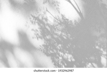 Leaves natural shadow overlay on white texture background, for overlay on product presentation, backdrop and mockup, summer seasonal concept - Shutterstock ID 1932962987