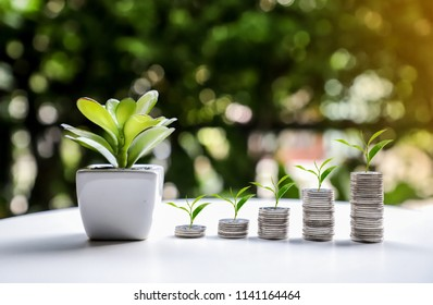 Leaves on silver coins versus prosperity or financial economy.