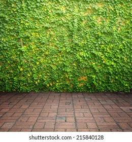 Leaves on wall and brick floor for background