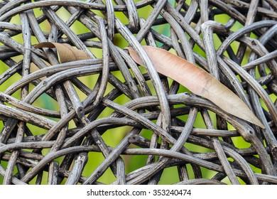 Leaves on weaving of wood