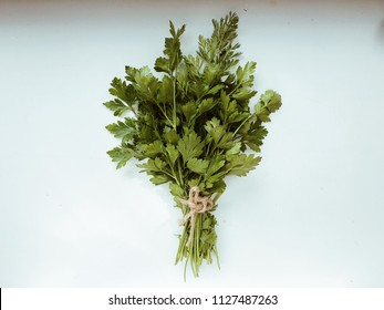 Leaves of parsley isolated on white background. Top view. Flat lay