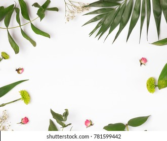 Leaves and plants on the white backgound, top view