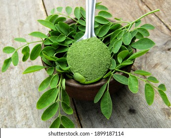 Moringaoleifera leaves with powder in a bowl