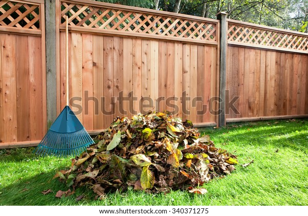 Leaves raked into a pile in a backyard beside a wooden fence.