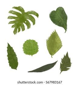 Leaves set illustrations