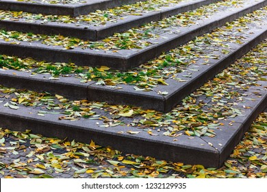 leaves and stairs in a fall day