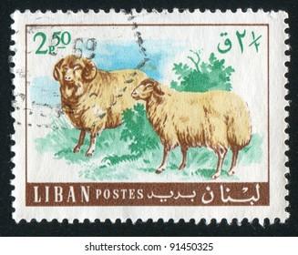 LEBANON - CIRCA 1968: A stamp printed by Lebanon, shows Sheep, circa 1968