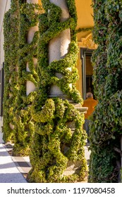 Lecco, Italy-April 1, 2018: Creeper pillar at famous Villa Del Balbianello at Lecco, Lombardy