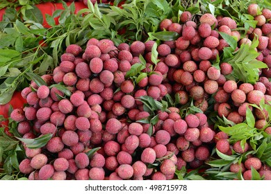 Lechee Fruits at the day Market in the city of Phuket on the Phuket Island in the south of Thailand in Southeastasia.