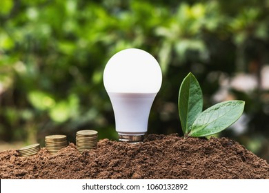 LED blub with green leaf and money on dirt. concept saving energy power