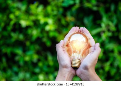 LED Bulb with lighting on hand with nature background .