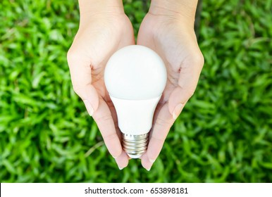 LED bulb in woman hand with green grass background and sun ray