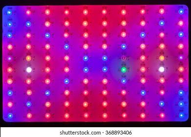 LED lamps grow light background, closeup view