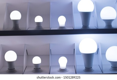 LED modern lights and bulbs on display in store lighting department.
