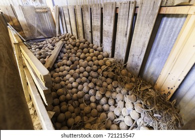 LEE VINING, CALIFORNIA - SEPTEMBER 3, 2017: Steel balls stored in a bin for use in a ball mill at an abandoned gold mine.