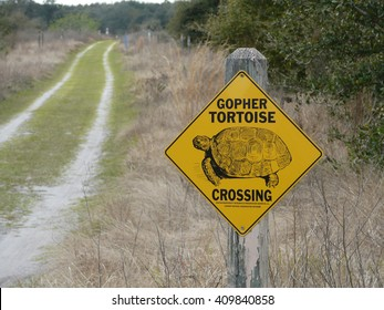 LEESBURG, FLORIDA â?? February 22: on February 22, 2016, a sign indicates gopher tortoise territory and conservation at PEAR Park in Leesburg, Florida.