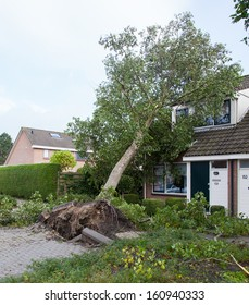 LEEUWARDEN, NETHERLANDS, OKTOBER 28, 2013: Massive storm hit the north of the Netherlands, total damage has been estimated at over 100 million euro.