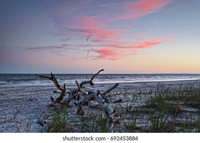 """""""Left By Matthew"""" Six months after Hurricane Matthew struck Hilton Head Island in October 2016, South Beach still bears evidence of it's power and fury, including remains of a once large tree."""