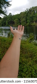 left Human hand offering help in nature next to a river with a star tatto in the wrist
