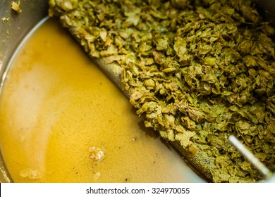 Left-Overs of Hops and Essential Oils of the mash into a Stock Pot after the Home Brewing Process