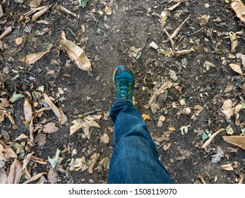 The leg and foot of a walker stride out on a woodland footpath, wearing blue jeans and trainers, with autumn leaves scattered about