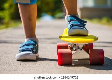 Leg are on a skateboard close up. A little boy is getting ready for a ride