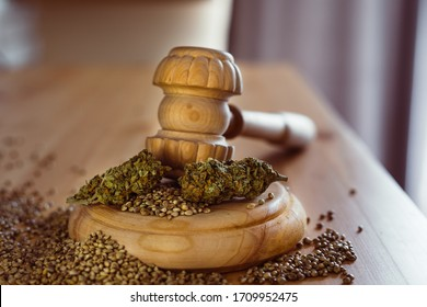 Legality of Medical Cannabis and  Seeds, legal and illegal Cannabis,  Seeds on the World - Wooden judge hammer and sound block with seeds and flower of marijuana CBD on the pinewood table background.