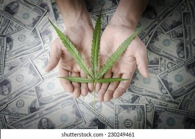 """""""Legalize Cannabis"""" concept. Hand holding a marijuana leaf floating above the several banknotes."""