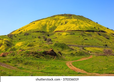 Legendary Golan Heights. Fresh green grass and a picturesque dirt road