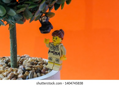 Lego minifigure woman in zoo keeper uniform taking care of a monkey figure on a tree. Editorial image, close up photo, studio shot isolated on orange background, macro photography. Animal care concept