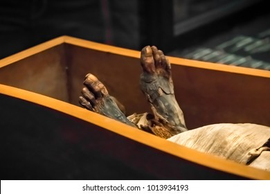 Legs of the ancient mummy in the sarcophagus, close-up