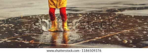 piernas del niño   con botas de goma saltan al charco en un paseo de otoño