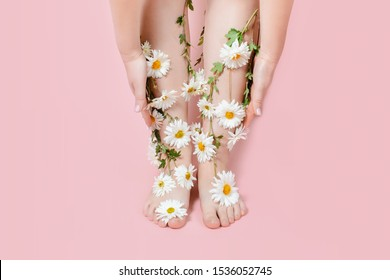Legs in flowers camomiles on a pastel background. The concept of pain, swelling of the legs, varicose veins of pregnant women, laser hair removal