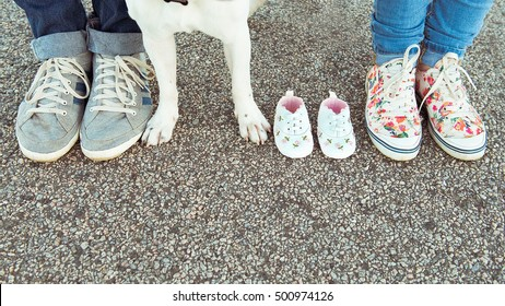 Legs, paws and booties on the pavement. Waiting for a baby.