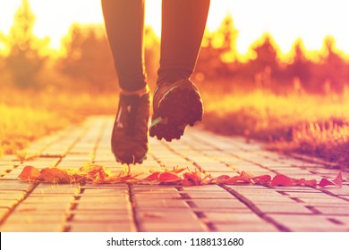 legs of a running sportswoman in the sun at sunset, toning