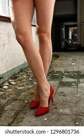 legs in shoes