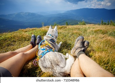 Legs of traveler sitting on a high mountain top in travel with dog husky