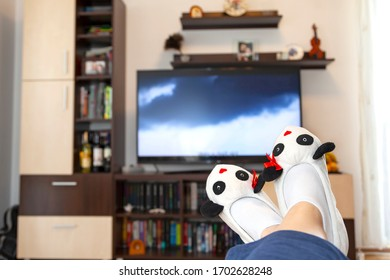 legs wearing panda slippers in front of the TV; woman watching tv