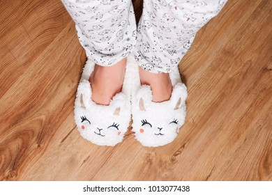 Legs of a woman in funny home slippers on the wooden background. Cozy home atmosphere.