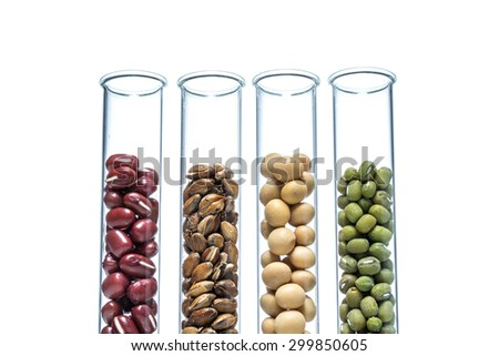 Legume Wheat Genetically Modified Plant Cell Stock Photo