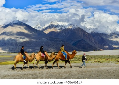LEH LADAKH ,INDIA - SEPTEMBER 24, 2015 : Tourists riding camels in Nubra valley in Himalayas, Ladakh, India.