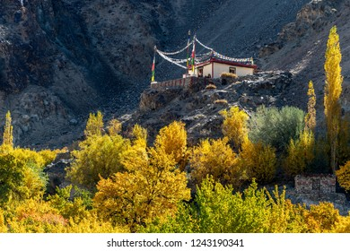 Leh, Ladakh/India-October 25,2018: Local Buddhist monastery in Turtuk village of the Leh district of Jammu and Kashmir located in the Nubra  during autumn season with beautiful yellow leaves on the hi