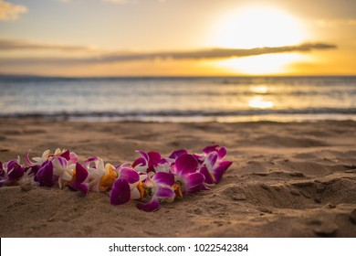 Lei on shore at sunset