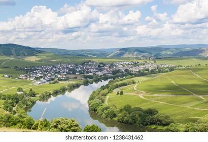 Leiwen at the Moselle Rhineland-Palatinate Germany.