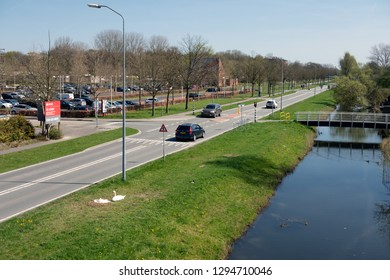 Lelystad, The Netherlands - April 18, 2018: Major road in early springtime along car park and ditch in Lelystad, capital city of Dutch province Flevoland. Near the ditch two brooding swans.