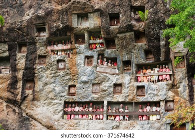 Lemo is cliffs old burial site in Tana Toraja. Galleries of tau-tau guard the graves. South Sulawesi, Indonesia