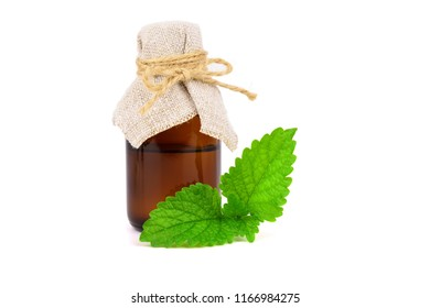 Lemon Balm (Melissa) Essential Oil in a Bottle. Also Melissa Officinalis, Common Balm Mint. Isolated on White Background.